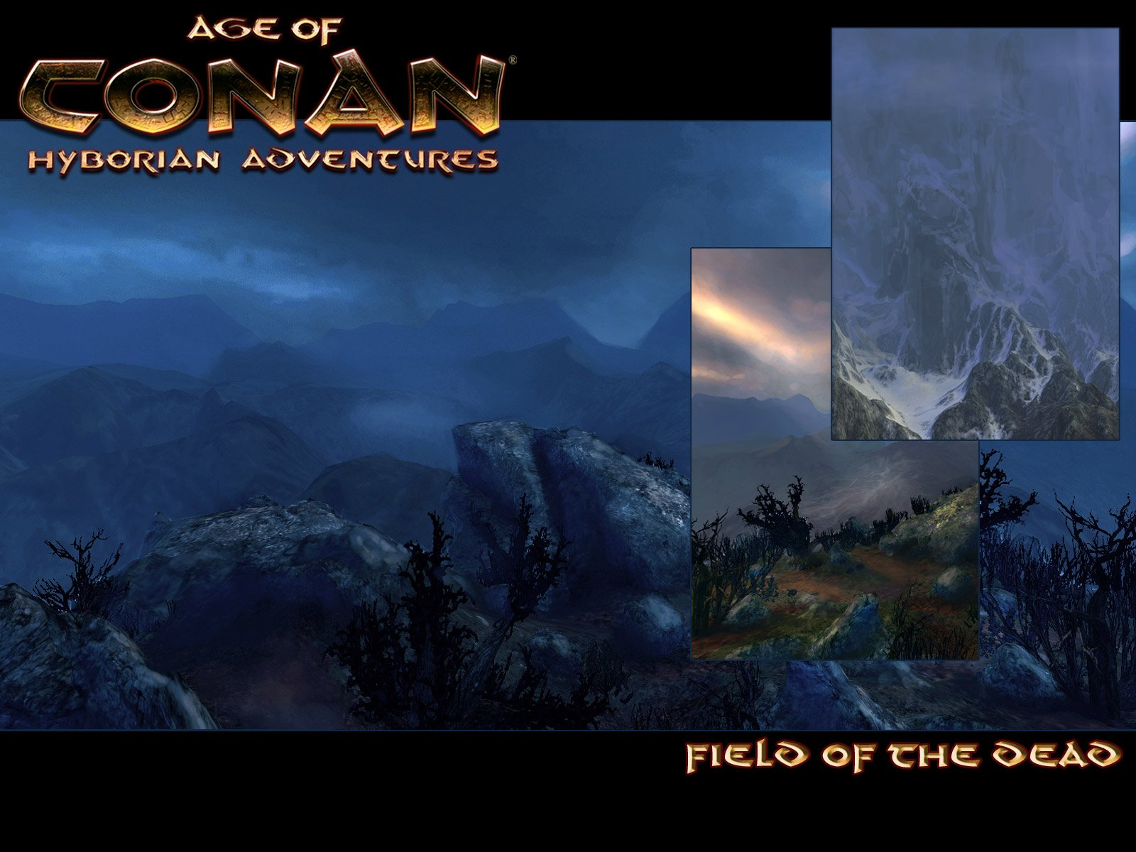 Age of Conan wallpaper 7
