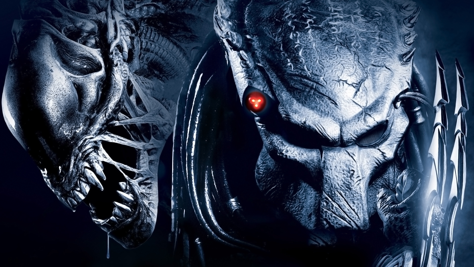 alien vs predator wallpaper 1 | wallpapersbq