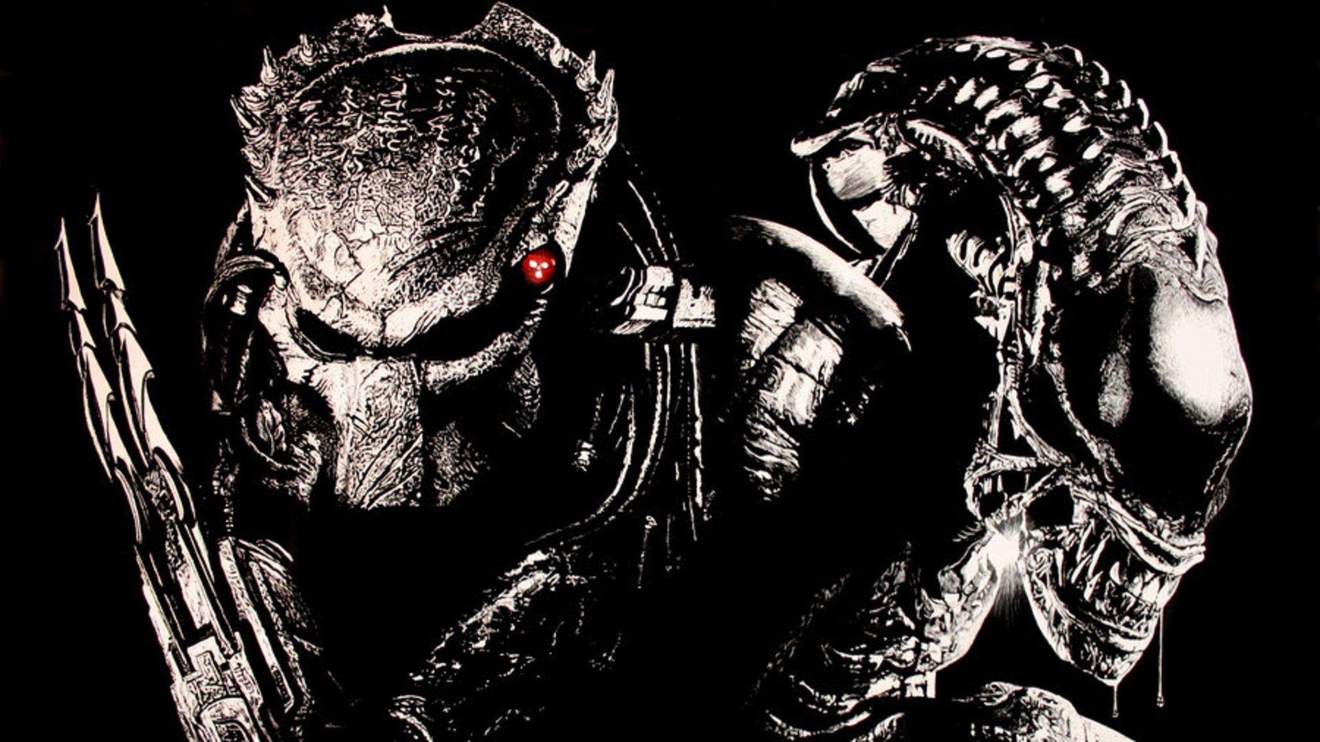 alien vs predator wallpaper 2 | wallpapersbq