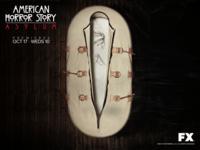 American Horror Story wallpaper 4