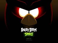 Angry Birds Space wallpaper 1