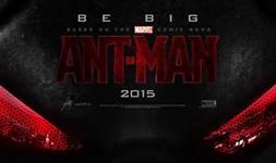 Ant-Man wallpaper 4