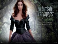 Beautiful Creatures wallpaper 5