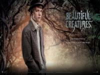 Beautiful Creatures wallpaper 6