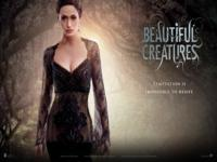 Beautiful Creatures wallpaper 9