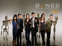 Bones wallpaper 3