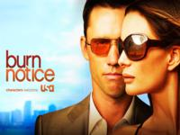 Burn Notice wallpaper 1
