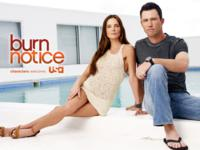 Burn Notice wallpaper 4