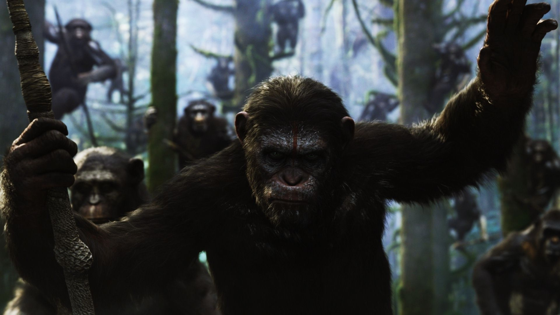 Dawn Of The Planet Of The Apes Wallpaper 1 Wallpapersbq