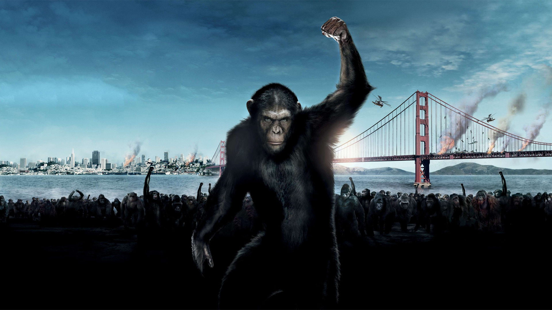 Dawn of the Planet of the Apes wallpaper 2