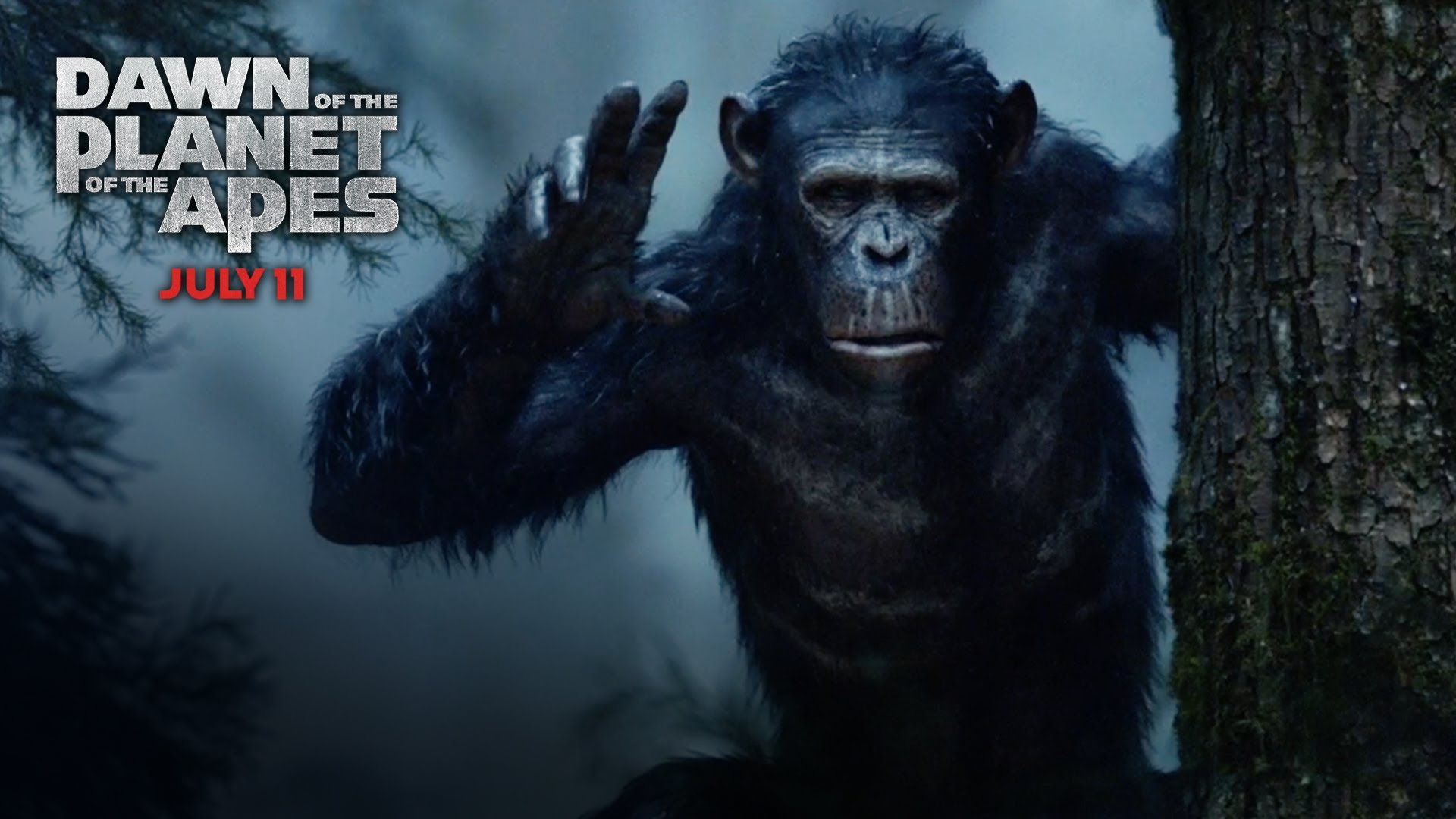Dawn Of The Planet Of The Apes Wallpaper 5 Wallpapersbq