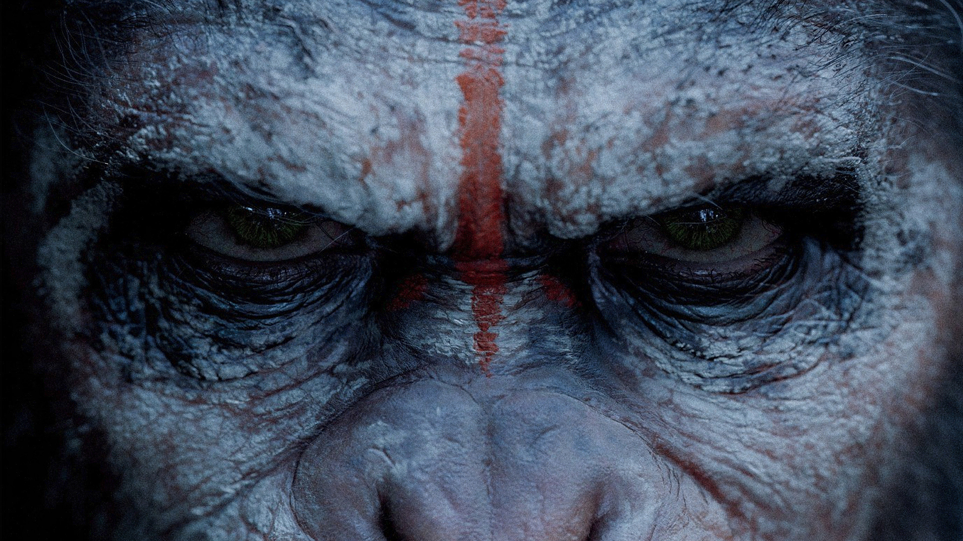 Dawn of the Planet of the Apes wallpaper 6