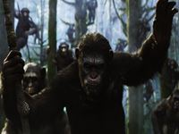 Dawn of the Planet of the Apes wallpaper 1