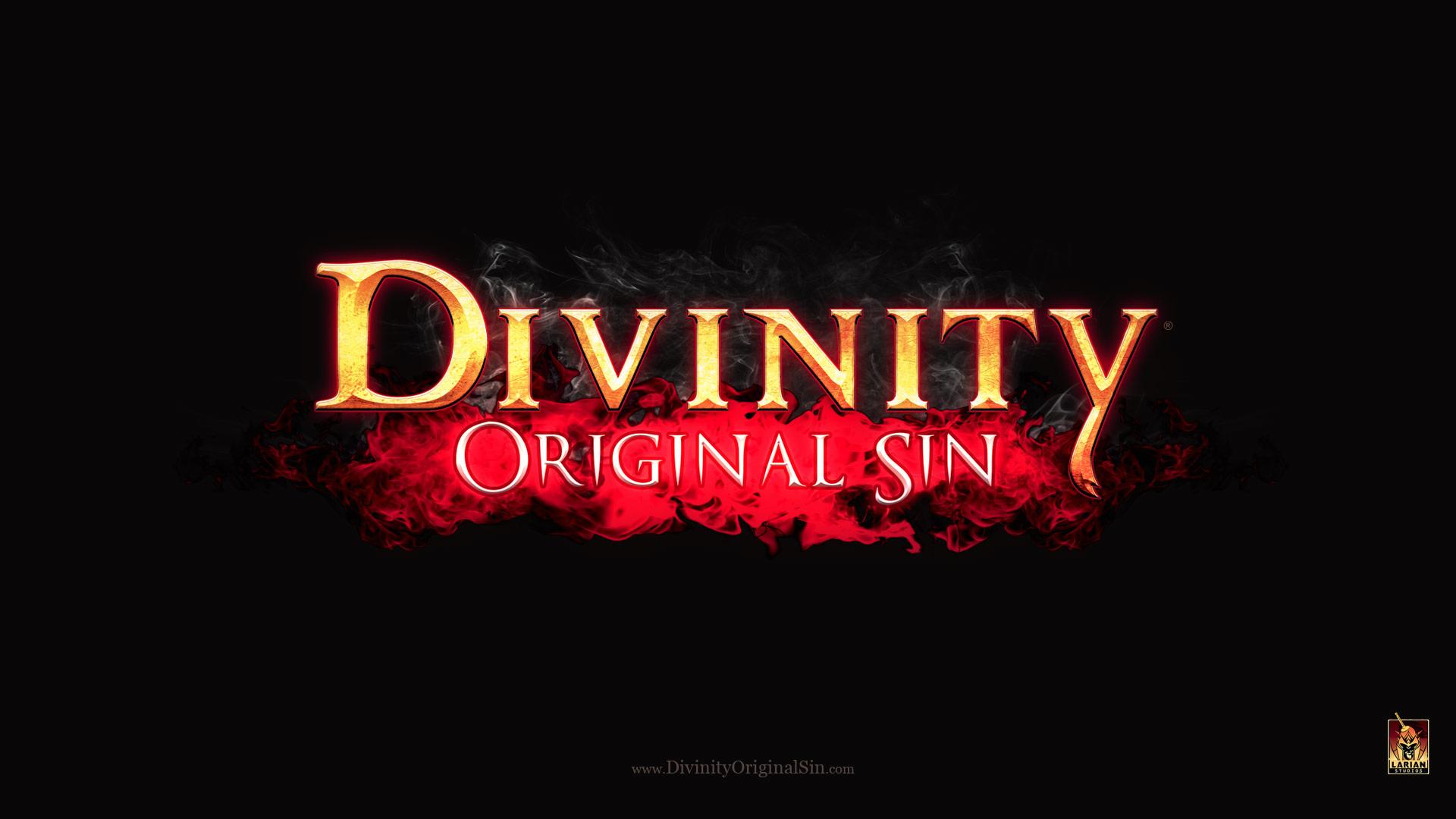 Divinity Original Sin wallpaper 3