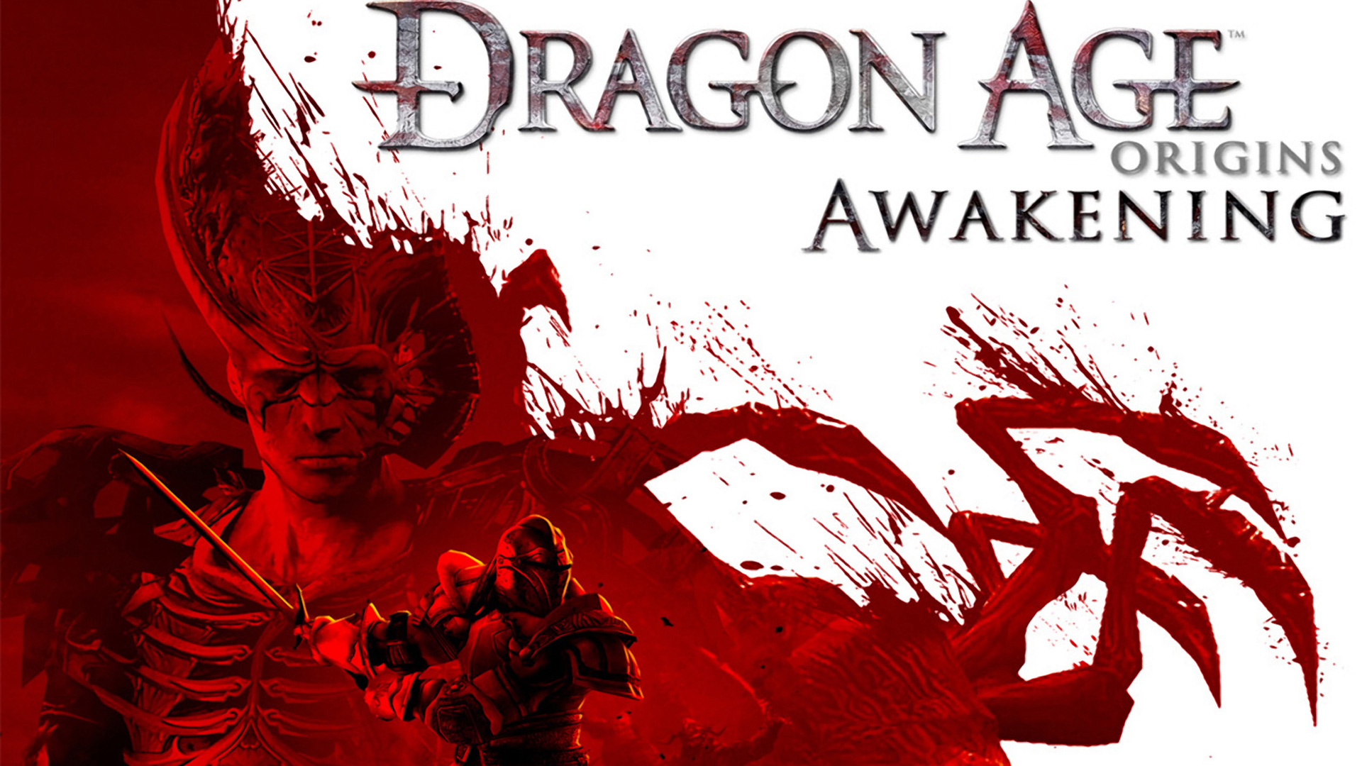 Dragon Age Origins Wallpaper 10