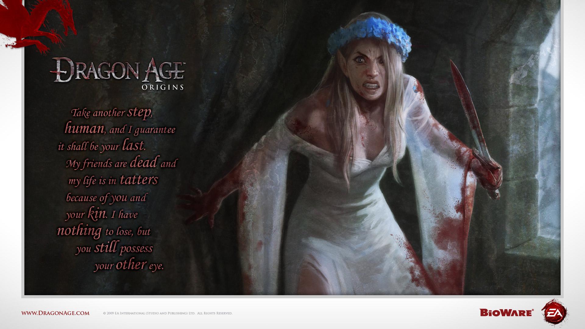 Dragon Age Origins wallpaper 7
