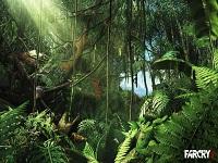 Far Cry 3 wallpaper 5