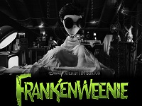 Frankenweenie wallpaper 1