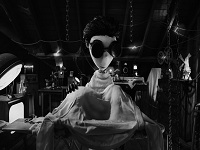 Frankenweenie wallpaper 3