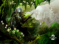Guild Wars 2 wallpaper 19