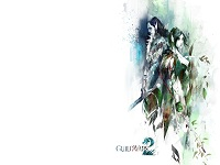 Guild Wars 2 wallpaper 20