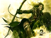 Guild Wars 2 wallpaper 9