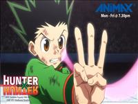 Hunter X Hunter wallpaper 6