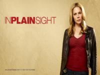In Plain Sight wallpaper 4