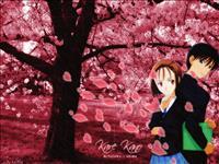 Kare Kano wallpaper 4