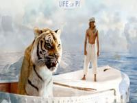 Life of Pi wallpaper 1