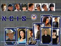 NCIS wallpaper 6