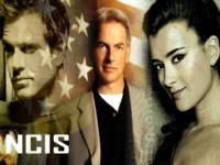 NCIS wallpaper 8