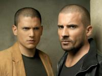 Prison Break wallpaper 13