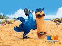 Rio Movie wallpaper 8