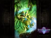 Starcraft 2 Heart of the Swarm wallpaper 10