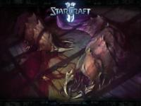 Starcraft 2 Heart of the Swarm wallpaper 21