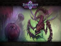 Starcraft 2 Heart of the Swarm wallpaper 9