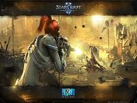 Starcraft 2 Wings of Liberty wallpaper 6