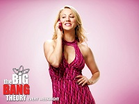 The Big Bang Theory wallpaper 15