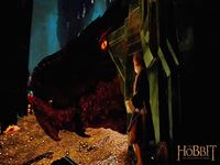 The Hobbit the Desolation of Smaug wallpaper 8