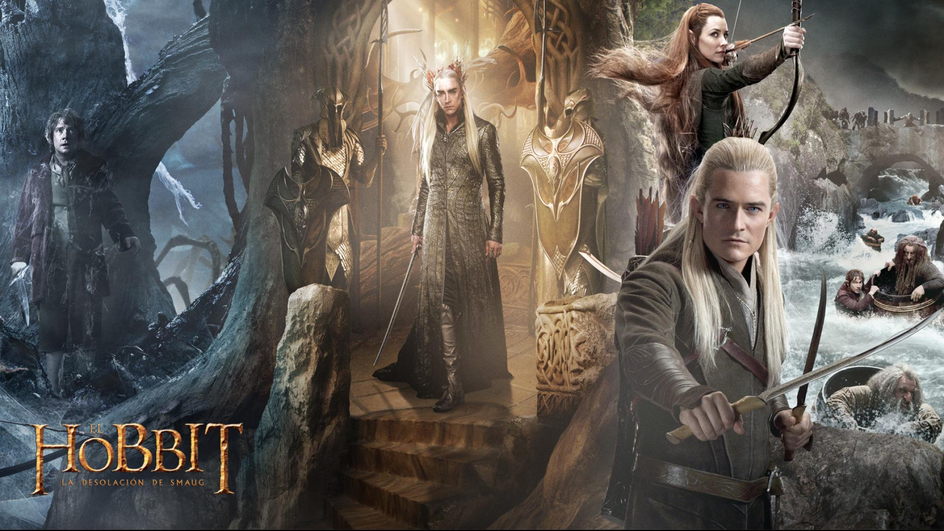 The Hobbit the Desolation of Smaug wallpaper 13