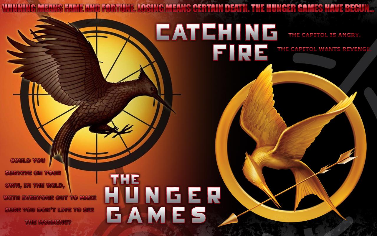 The Hunger Games Catching Fire Wallpaper 2 Wallpapersbq