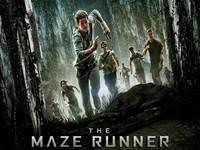 The Maze Runner wallpaper 1