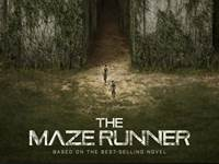 The Maze Runner wallpaper 2