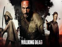 The Walking Dead wallpaper 15
