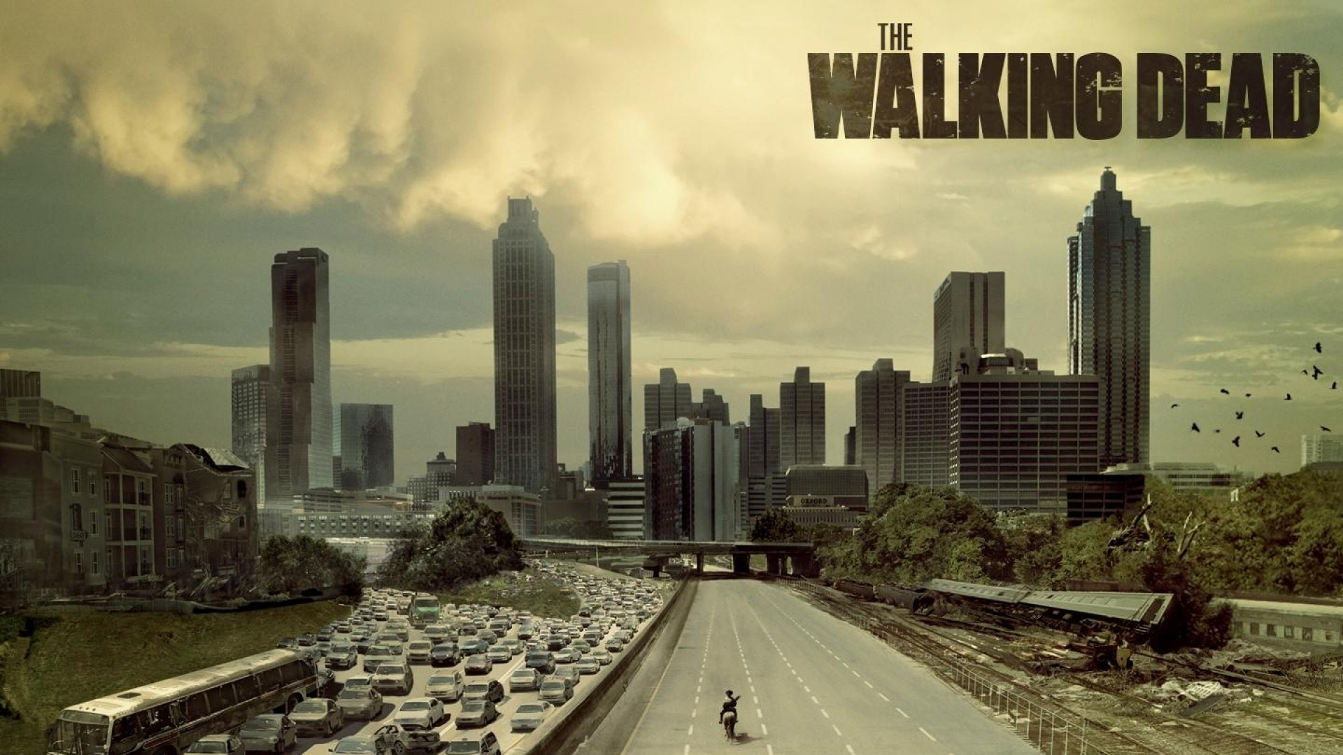 The Walking Dead wallpaper 12