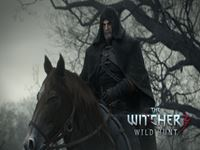 The Witcher 3 wallpaper 14