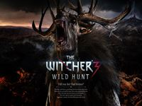 The Witcher 3 wallpaper 16