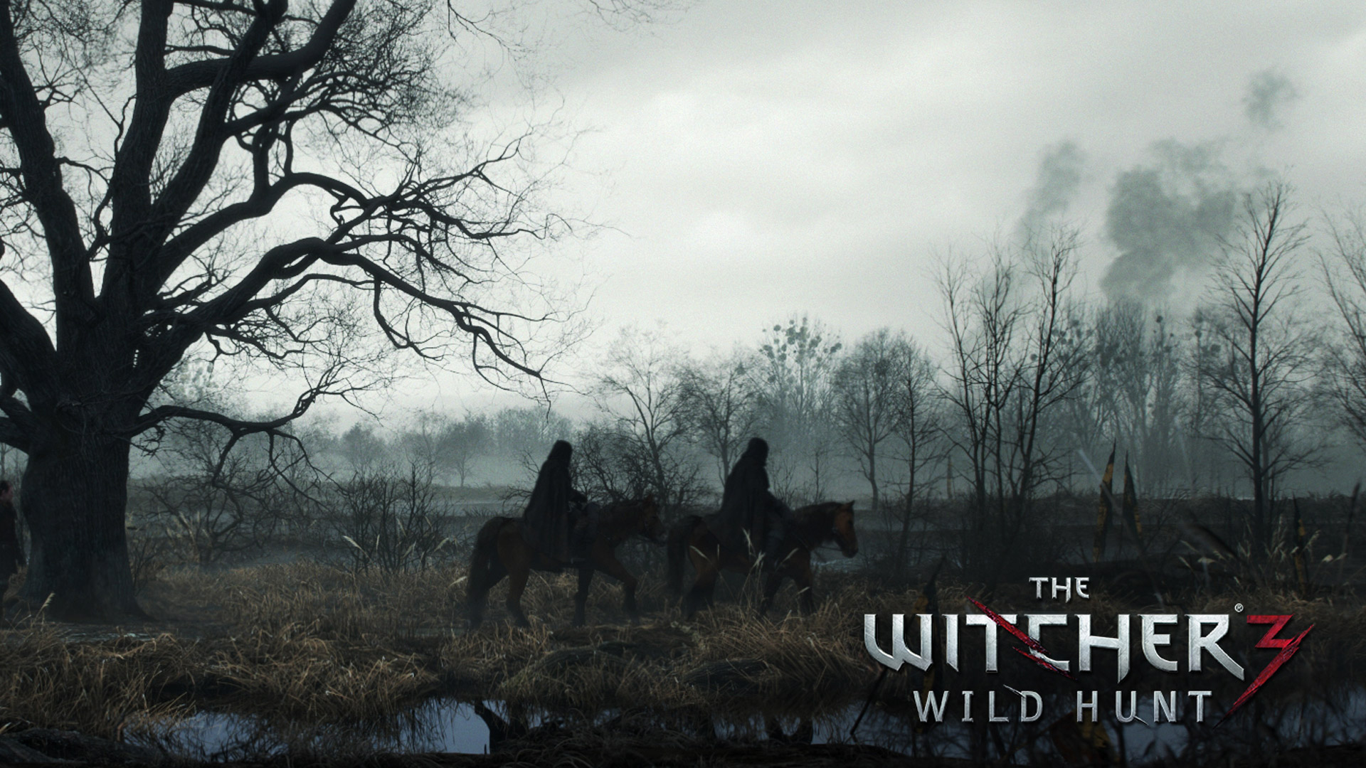 The Witcher 3 wallpaper 12