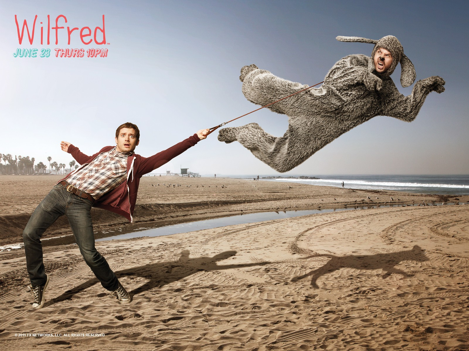 Wilfred wallpaper 10